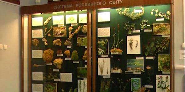 Музейні мандри РОСЛИННИЙ СВІТ