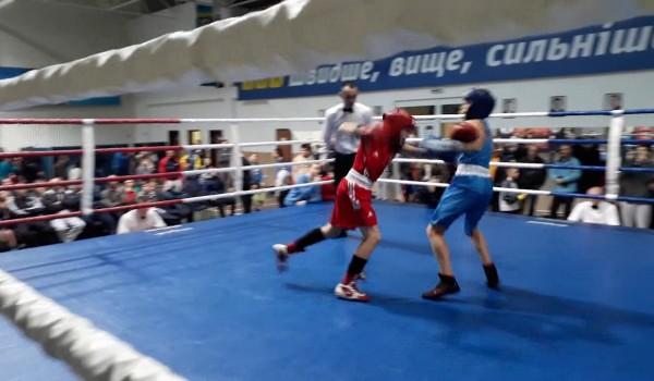Підготовка боксерів до Чемпіонату України